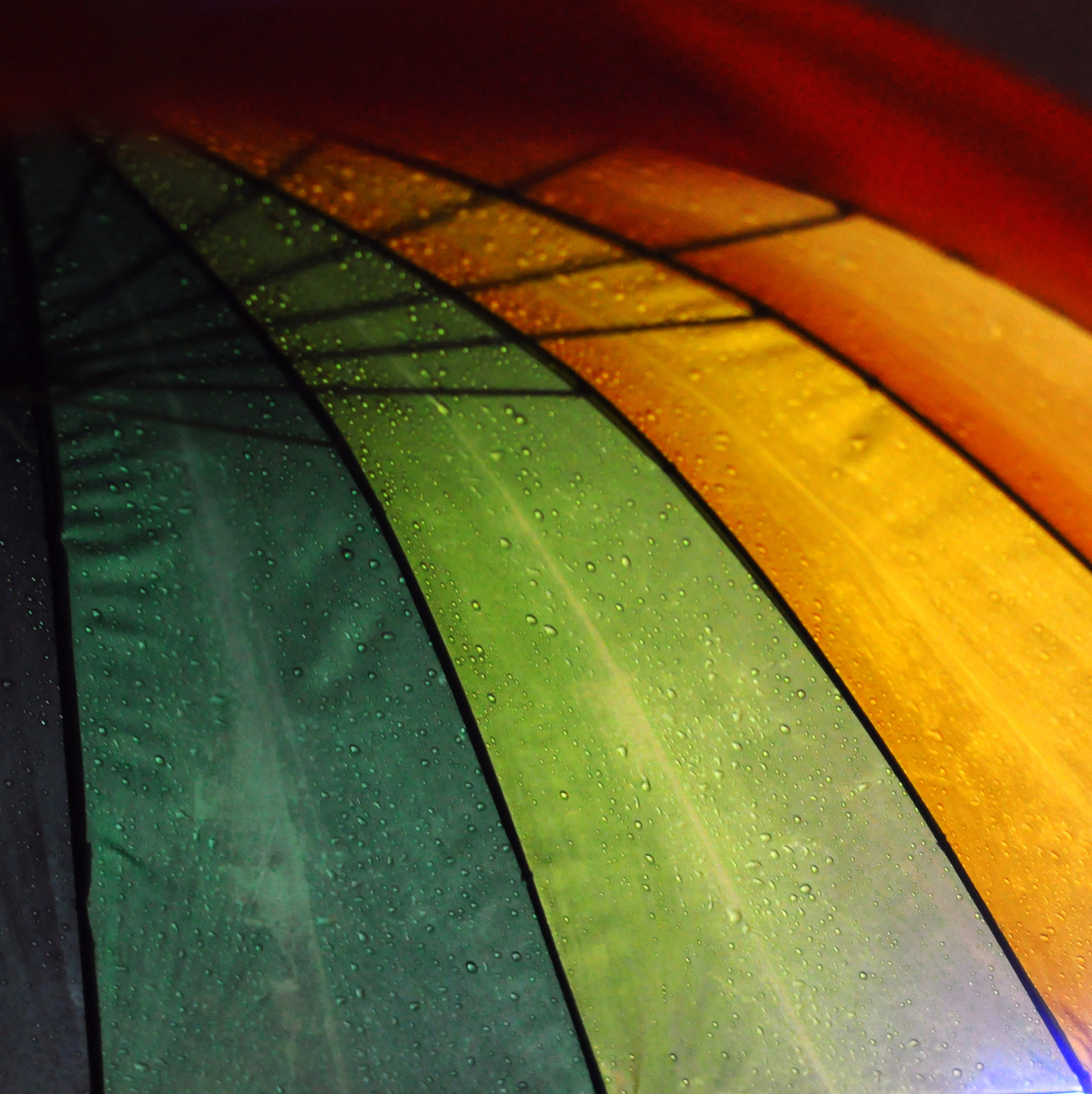 Photo Rainbow - Anne d'Huart, publiée dans Backlight Magazine Issue 3